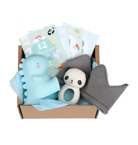 Baby gift box with Teething toy panda, Little light T-Rex, 12 double-sided Baby photo cards, baby hat (0-3 months)